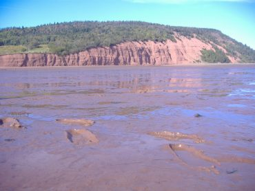 High above the mucky muck - A Day in Annapolis Royal 10