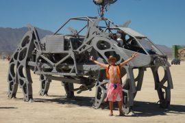 Playa Crawlers
