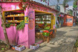 Beyond the Resort Gates of Puerto Vallarta 17