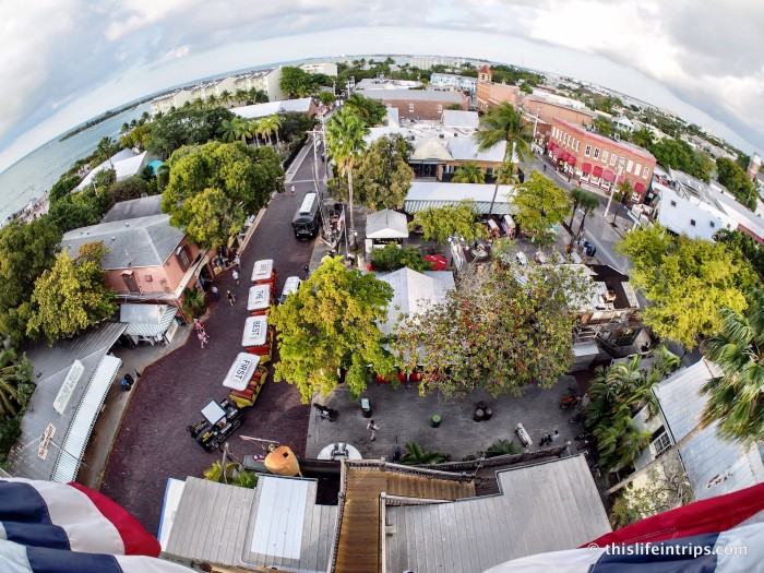 odd things to do in Key West
