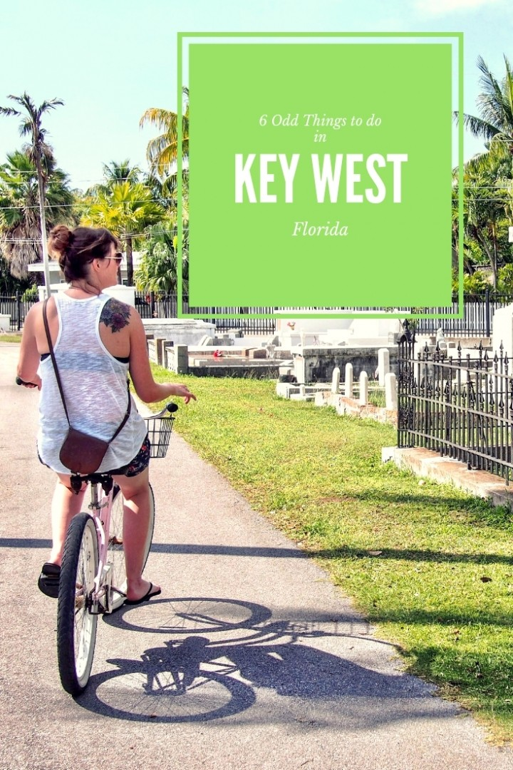 Odd Things to do in Key Weird