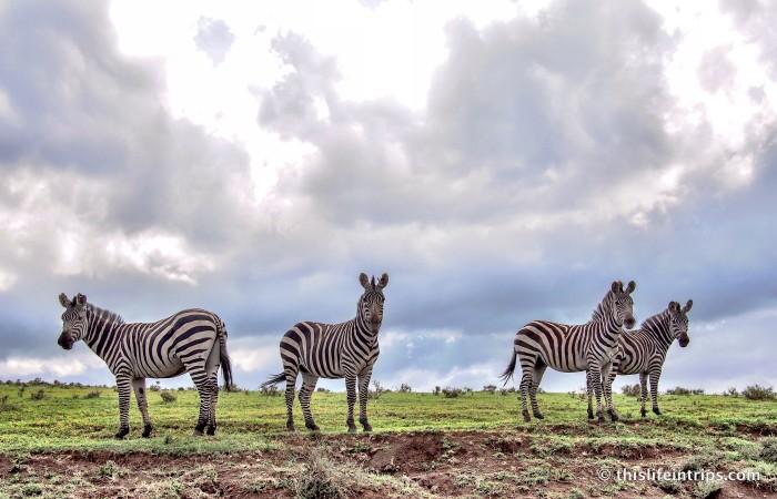 Experiencing Tanzania from Chaka Camp 16