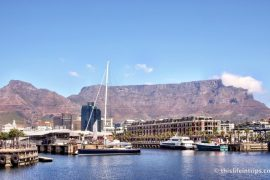 Why I Decided to Live in Cape Town 10