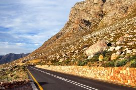 The Garden Route in 3 Days 8