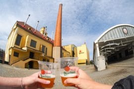 Day Trip to Pilsen – Europe's Capital of Culture 10
