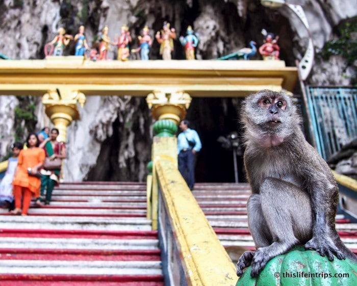 Visiting Batu Caves From Kuala Lumpur 5