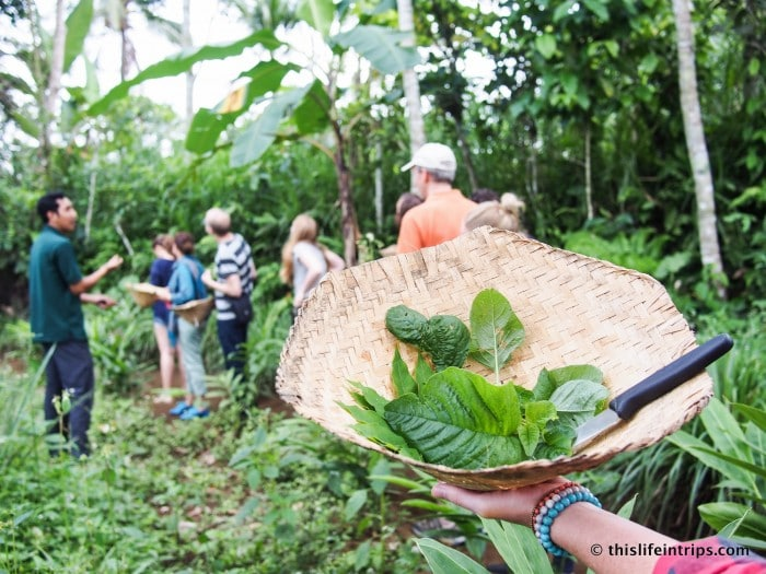 Getting Fresh & Local at the Balinese Farm Cooking School 1