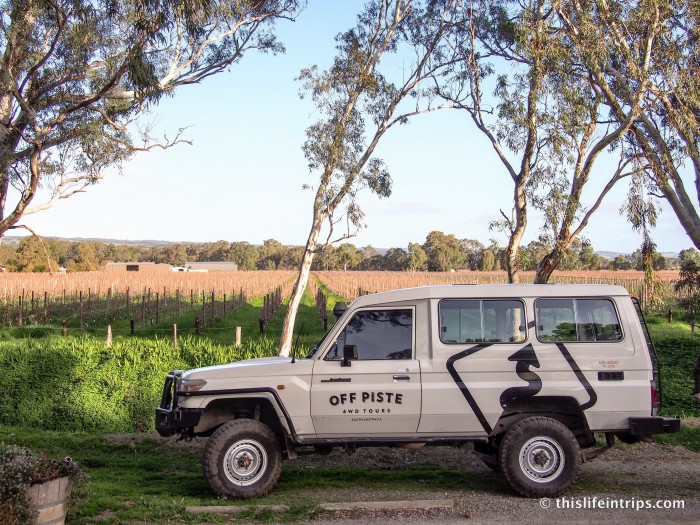 Craft Brew & Didgeridoos - Touring the Fleurieu Peninsula 3