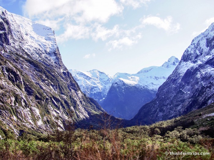Milford Sound with Real Journeys