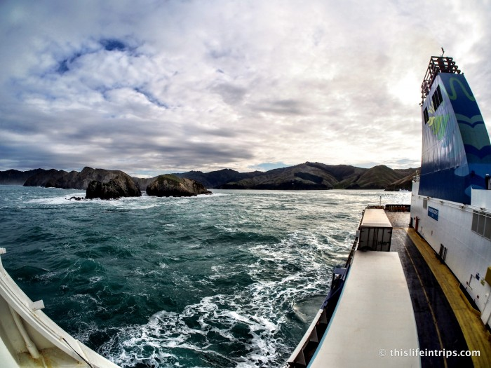 Crossing the Cook Strait in Style – Kaitaki Plus Lounge Review 10