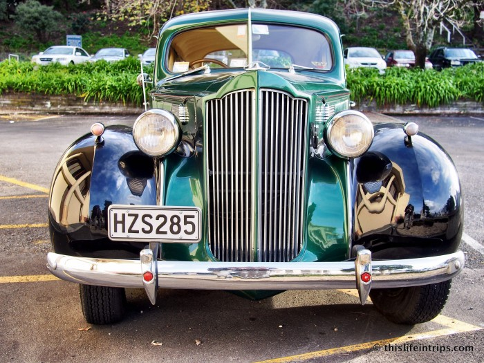 Experiencing Napier with an Art Deco Vintage Car Tour 3