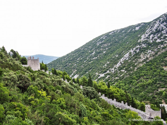 Dubrovnik Top Tours