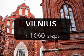 Understanding Lithuanian Beer Culture with Vilnius in Love 13