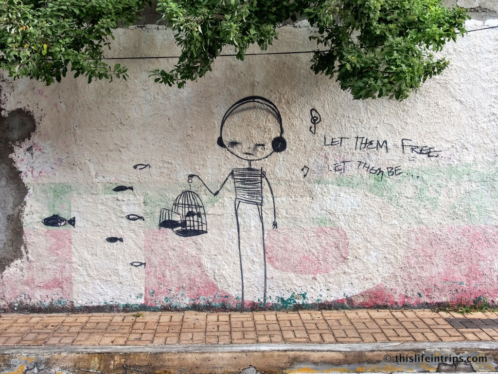Discovering the Street art of Islas Mujeres