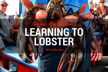 Learning to Lobster the Acadian Way – Shediac Bay Cruises Lobster Tales Review
