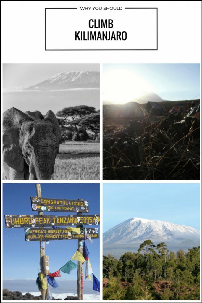 5 Reasons Why You Should Climb Kilimanjaro Right Now